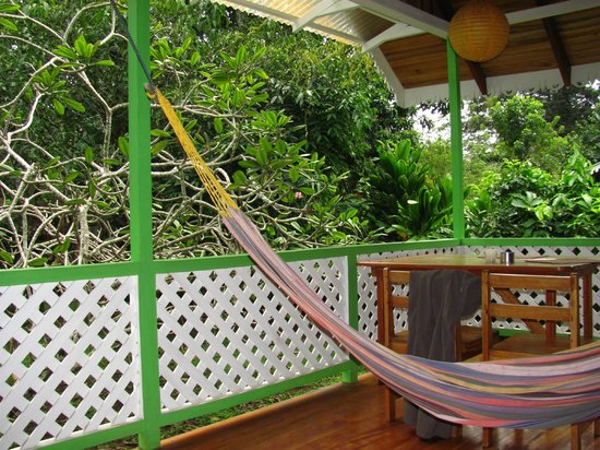 Chimuri Beach Retreat: View from the hammock