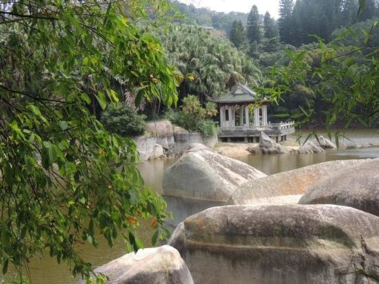 Xiamen Botanical Garden: озерцо у входа