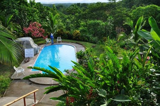 Hotel Cerro Lodge: Lovely pool and gardens