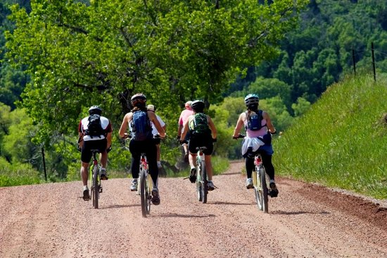 Mont Bouquet Lodge & Activity Center : The Lodge has mountain bikes that can be hired to explore some trails.