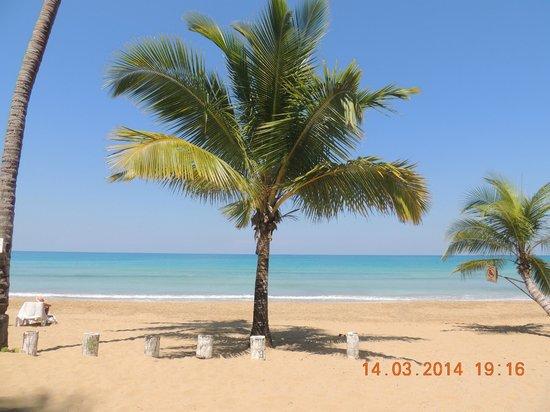 Casa Coson: La plage...