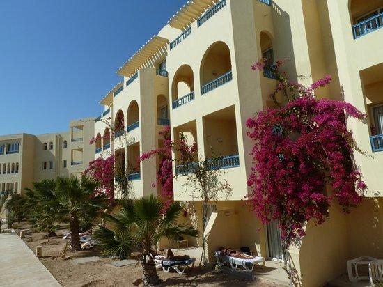 Hotel Djerba Les Dunes: Chambre face a la piscine