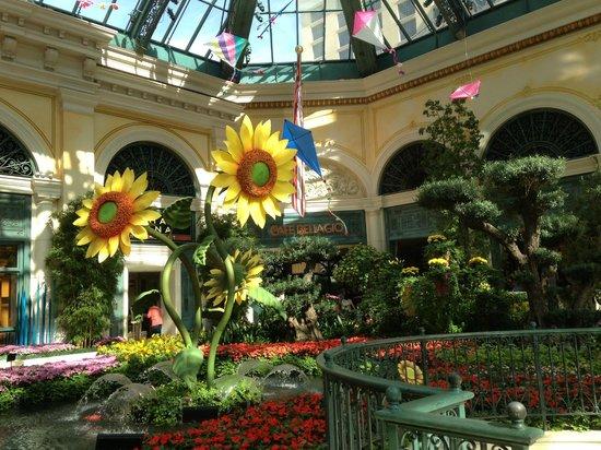 Decor Du Jardin Picture Of Conservatory Botanical Gardens At Bellagio Las Vegas Tripadvisor