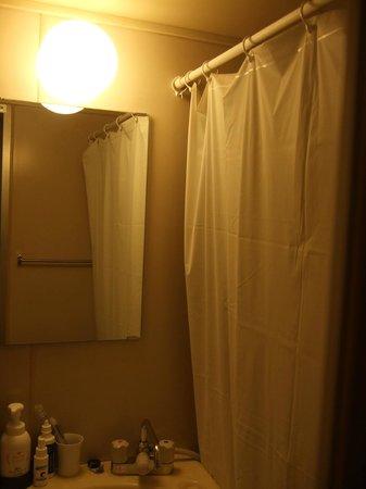 Tokyo Plaza Hotel: Bathroom - Bagno