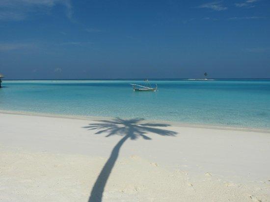Gili Lankanfushi Maldives : Beautiful