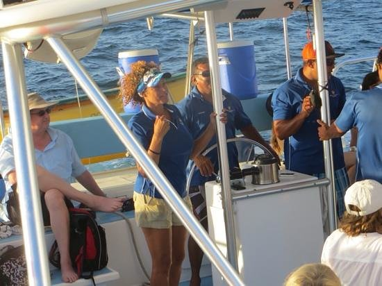 Blue Dolphin Sailing : The crew were top notch