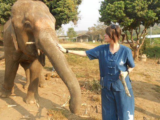 Baanchang Elephant Park - Private Day Tours: Feeding the elephants