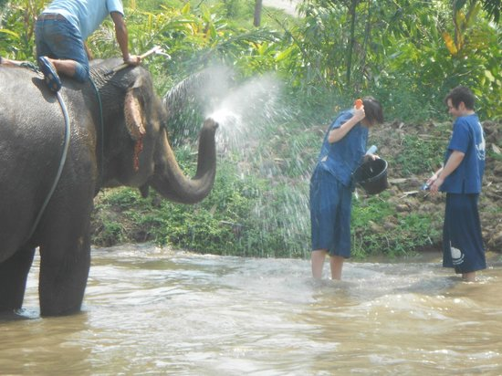 Baanchang Elephant Park - Private Day Tours: Bathing the elephants