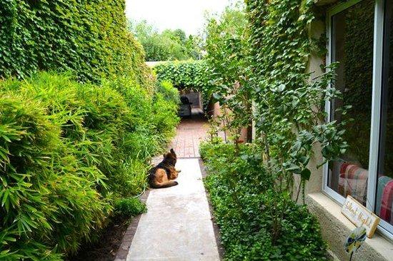 Casa Lila : Entrance walkway