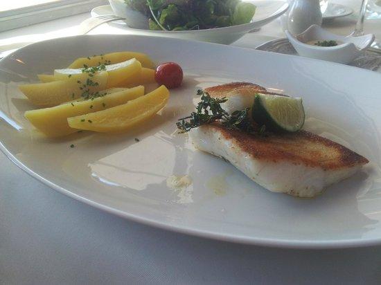 Hotel Restaurant Traube: Der Fisch.