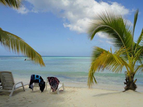 Saona Island: Seconda Playa em Saona, onde servem o almoço