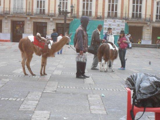 La Candelaria: Plaza Bolívar un dìa domingo