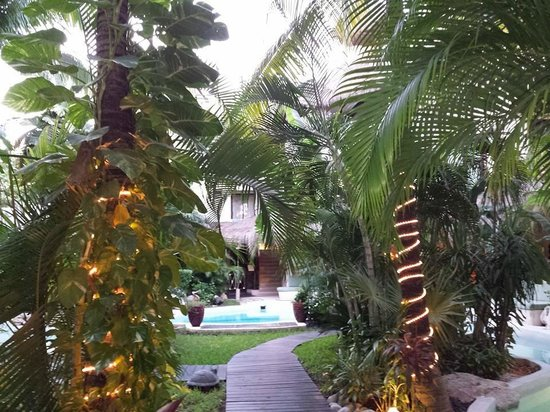 La Tortuga Hotel & Spa : the grounds are beautiful
