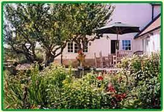 Applegrove: the terrace
