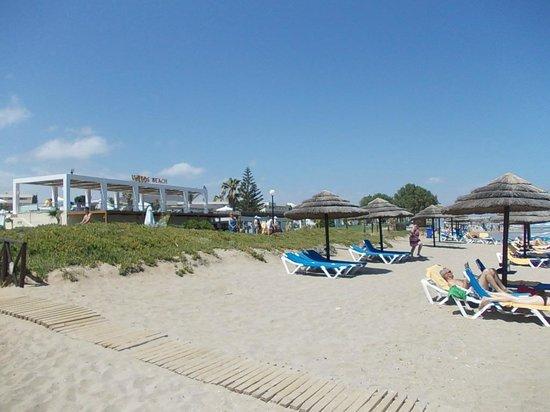 Lyttos Beach Hotel : Plage