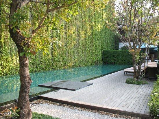 137 Pillars House Chiang Mai: Pool mit Liegen