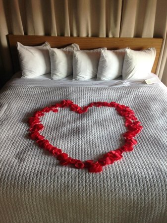 NYLO Providence/Warwick: Rose petals on the bed for a romantic evening!