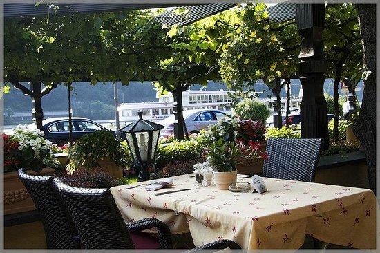 Hotel Unter den Linden Restaurant: Вид на Рейн от нашего столика.