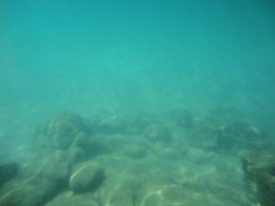 Parc Xel-Ha : Fundo da lagoa Xel Há