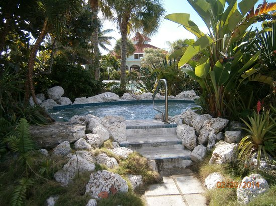 Taino Beach Resort & Clubs : The only hot tub (never went in it)