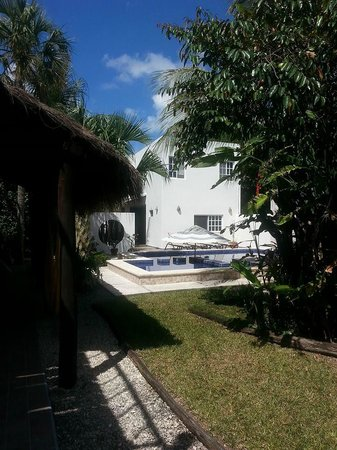 Villa Escondida Cozumel Bed and Breakfast : Shade, pool, and sun!