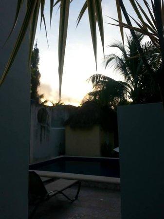 Villa Escondida Bed and Breakfast: Daybreak.