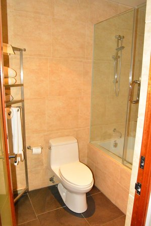 14 West: bathroom with large shower