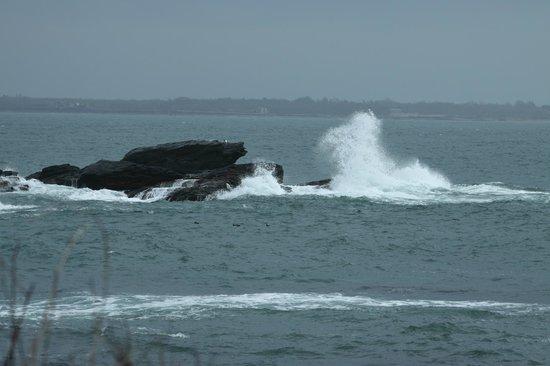 Sachuest Point National Wildlife Refuge: Rough surf.