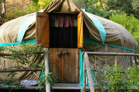 Chestnut Tree Yurt - Yurt Holiday Portugal