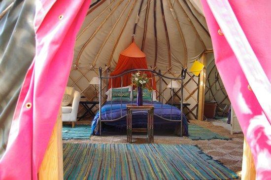 View into Apple Tree Yurt - Yurt Holiday Portugal