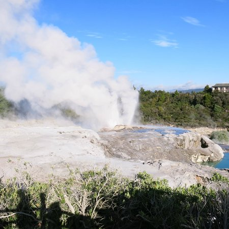 New Zealand Maori Arts and Crafts Institute: Pohutu Geyser