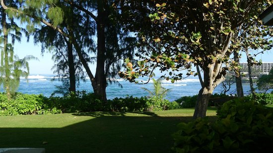 Turtle Bay Resort: View from our beach cottage