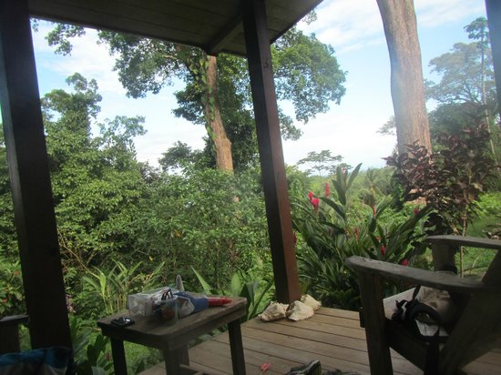 Tranquilo Bay Eco Adventure Lodge : View from our cabin