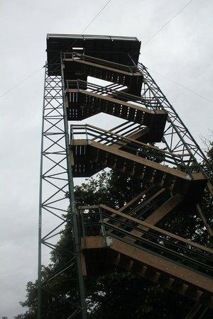 Tranquilo Bay Eco Adventure Lodge: Birding Tower