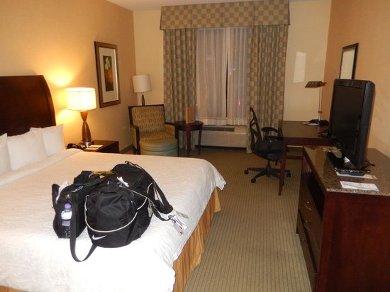 Hilton Garden Inn Dulles North: King Room on 1st Floor