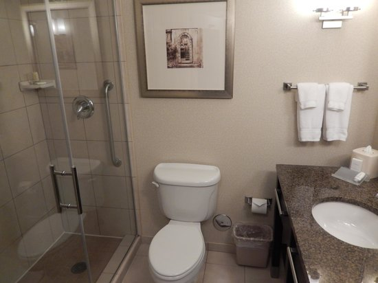 Hilton Garden Inn Dulles North: Bathroom