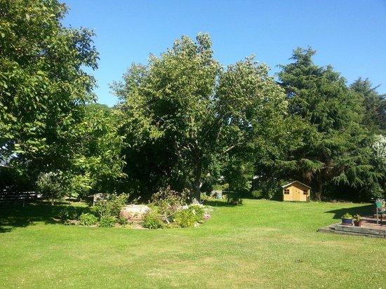 St Leonards Vineyard Cottages : The garden