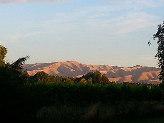 St Leonards Vineyard Cottages : Sunset in front of the Shearers Quarters