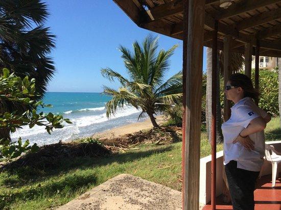 Treasure Beach Hotel: Widok z altany