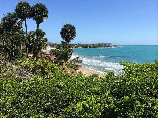 Treasure Beach Hotel: Widok z pokoju