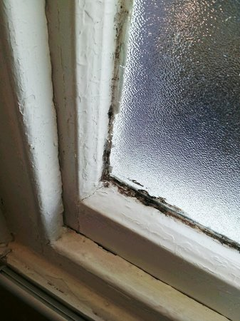 Hallmark Hotel Carlisle: Bedroom window
