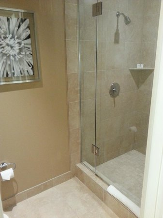 Valley View Casino Hotel: Shower