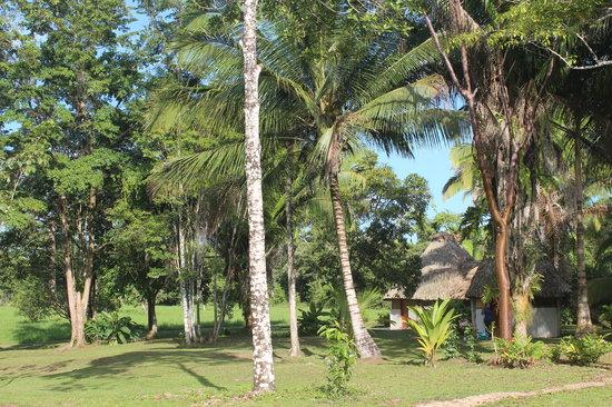 Kiskadee Lodge: Garden View