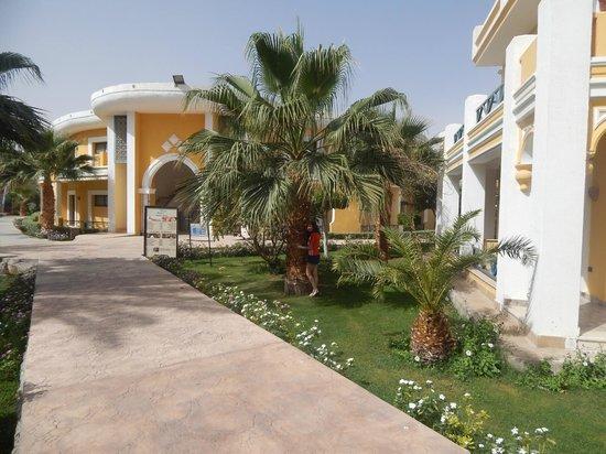 Lilly Land Beach Club Hotel : 123