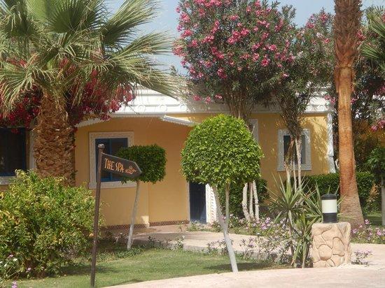 Lilly Land Beach Club Hotel : 432