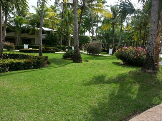 Paradisus Punta Cana Resort: Extrañamos este jardin!