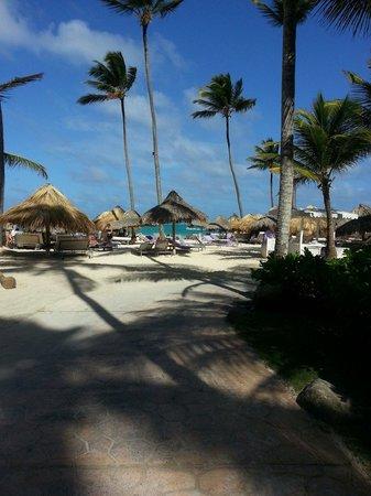 Paradisus Punta Cana: Año nuevo en el Paradisus!