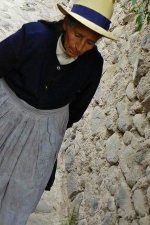 Tempel von Ollantaytambo: Old lady