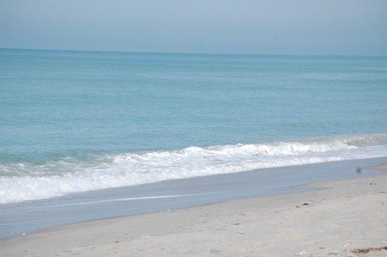 Pearl Beach Inn : Beautiful beach