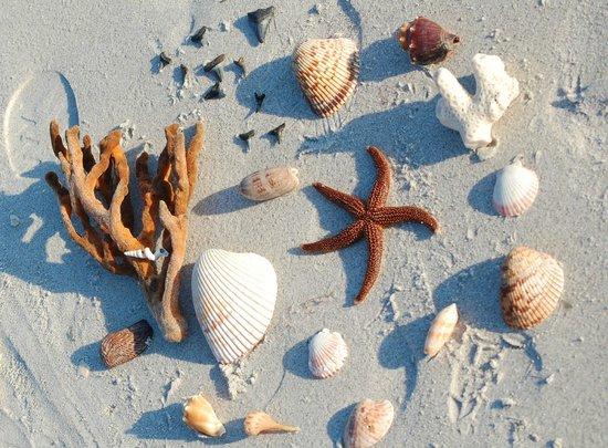 Pearl Beach Inn: Beach Bling we found